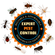 frankfort-indiana-expert-pest-control